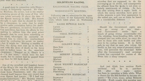 Goldfields Racing Guide